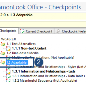 Screen shot of the CommonLook Office Global Access panel showing the All Checkpoints Tab, the Parent Node of a checkpoint group is highlighted, and the Checkpoint Preferences tab is labeled.
