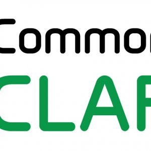 commonlook-clarity-logo