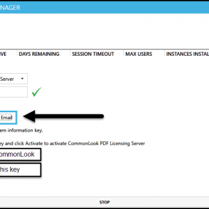 The CommonLook Licensing Manager New Activation screen with the Activate by Email option selected. The System Info and Activation Key fields are highlighted.