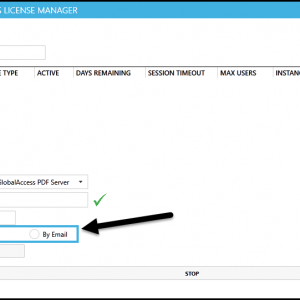 """The CommonLook Licensing Server Manager New Activation screen with the Activate by Internet option selected and the """"Activate"""" button highlighted."""